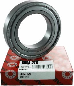 Fag Bearing Sr Ball 6004-2zr