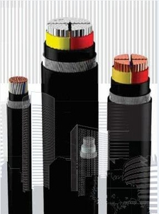 Havells Aluminium Unarmoured A2xy Lt Power Cables 2 Core 300 Sq.Mm