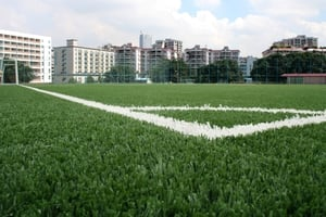 Vitofloor 200 Stitches 5x2 M Sports Turf Grass