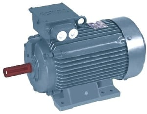 Oswal 3 Phase 2 Hp 2 Pole Foot Mount Induction Motor Om-15-Fom