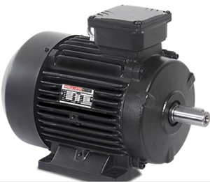 Havells 3 Phase 2.5 Hp 2 Pole Foot Mount Induction Motor Mhcites201x8