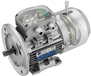 Rotomotive 80a-2 Delphi Tefc Induction Motor (Speed- 3000 Rpm, Power Output- 0.75 Kw)