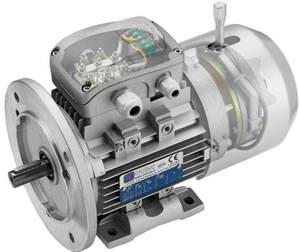 Rotomotive 71a-6 Delphi Tefc Induction Motor (Speed- 1000 Rpm, Power Output- 0.18 Kw)