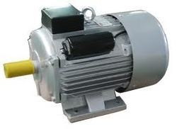 Oswal 1 Phase 2 Hp 4 Pole Foot Mounted Induction Motor Om-7b-(Ci)-Randha