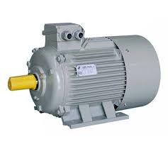 Eagle 1 Phase 0.25 Hp 4 Pole Foot Mounted Induction Motor