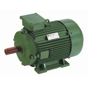 Hindustan Electric Induction Motor Foot Mount Induction Motor 50.0 Hp 2hs1 207 0203