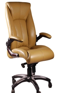 Swift Director Chair Golden Color Se 237