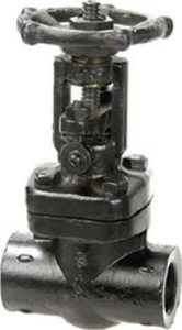 Sant Valves 1/2 Inch Screwed End Forged Steel Gate Valve - Fsv-1a