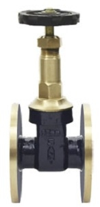 Sant Valve 1 Inch Gun Metal Gate Valve - Is 4