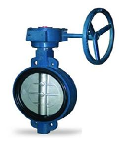 Valvequip 150mm Ss 316 Disc Wafer Type Butterfly Valve Vq-20.5