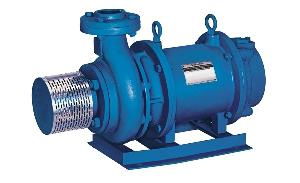 Crompton OWHE1 52 1 5 HP Openwell Submersible Pump